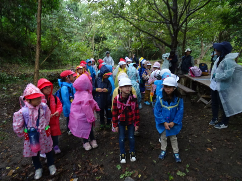 淡輪小学校1年生遠足「うみべの森探検」_c0108460_15044447.jpg