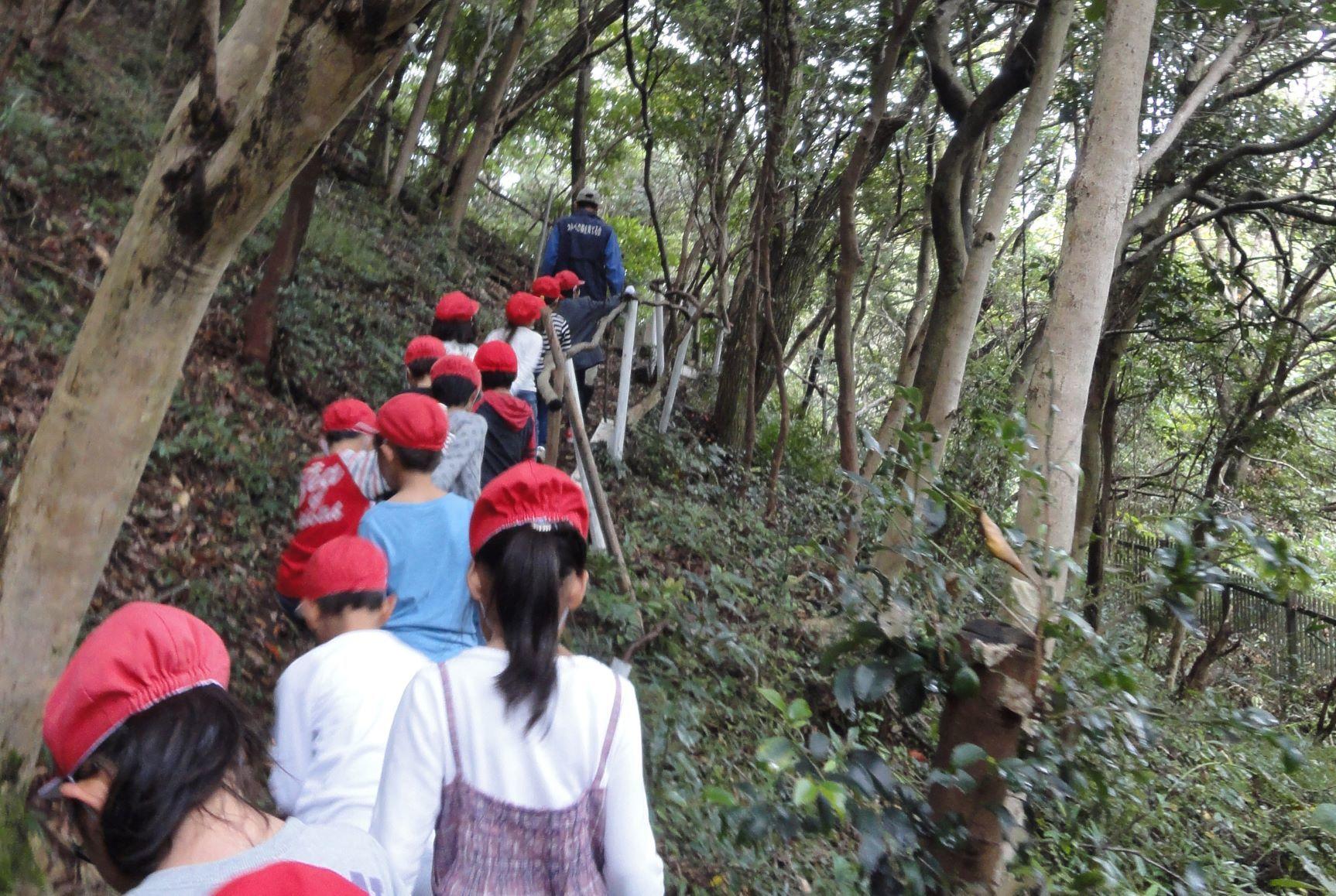 淡輪小学校1年生遠足「うみべの森探検」_c0108460_20284090.jpg