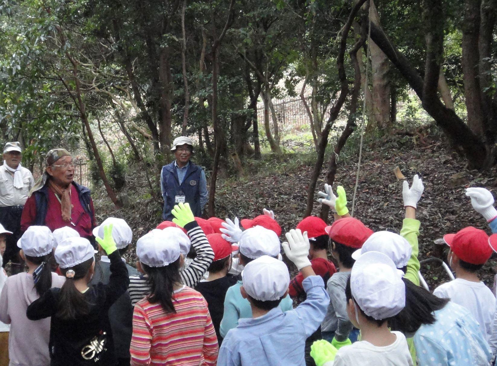 淡輪小学校1年生遠足「うみべの森探検」_c0108460_20284163.jpg