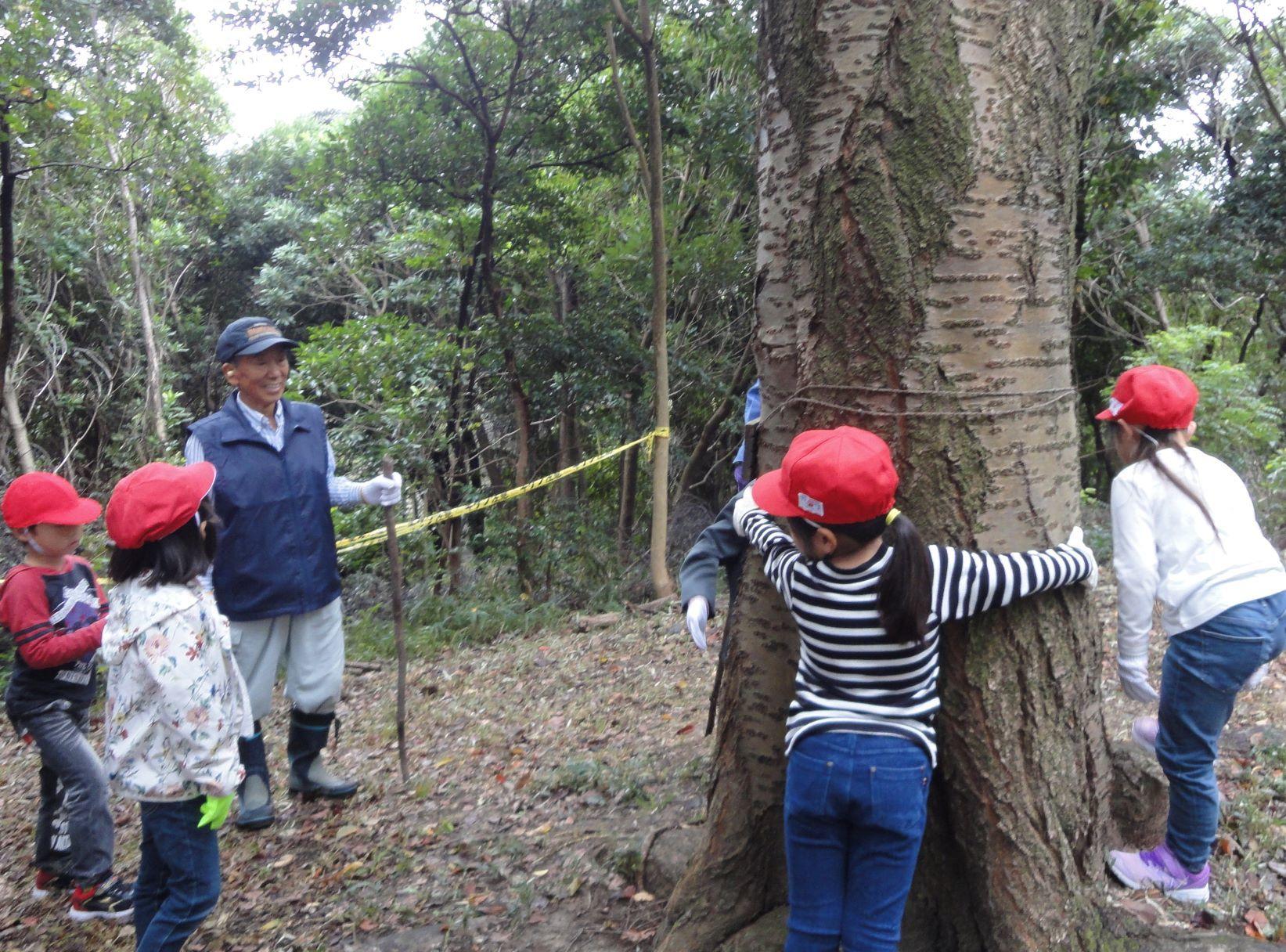 淡輪小学校1年生遠足「うみべの森探検」_c0108460_20284170.jpg