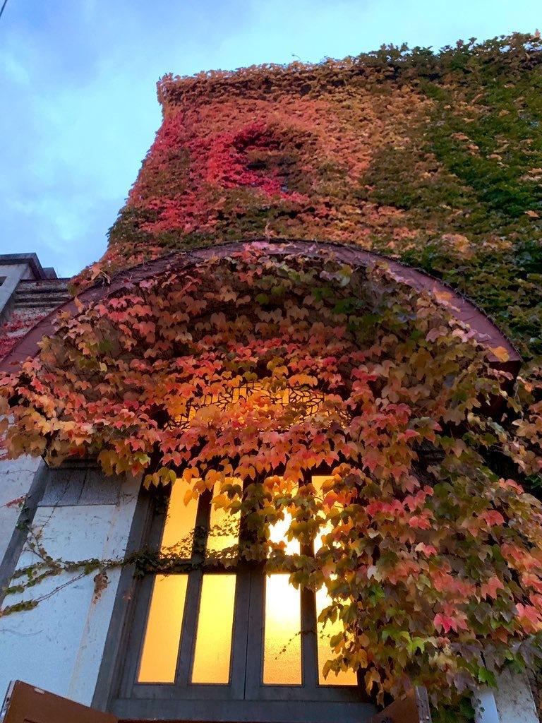 紅葉も見ごろです。_a0141072_18570416.jpeg