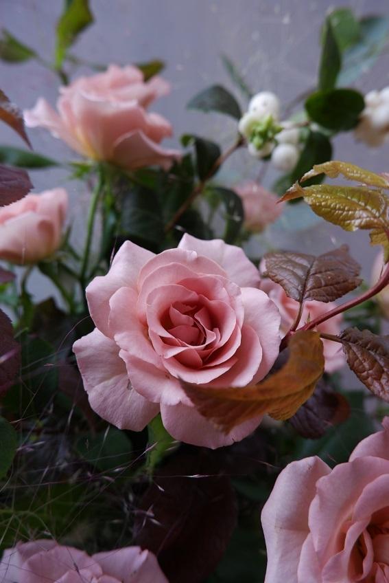 オークリーフ(バラシュナーベルの花束)_f0049672_11381795.jpg