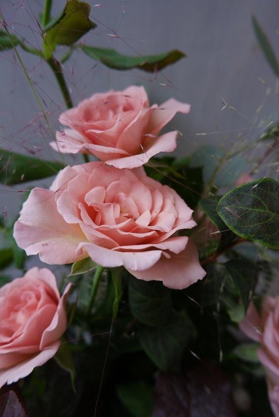 オークリーフ(バラシュナーベルの花束)_f0049672_11381838.jpg