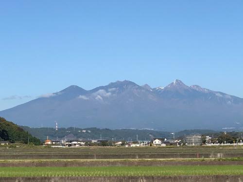 八ヶ岳も、富士山も、雪化粧。_d0338282_15540336.jpg