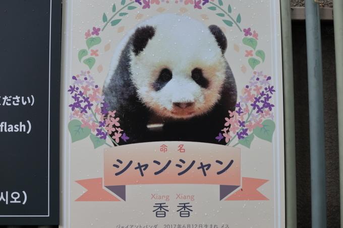 【上野動物園】part 1_f0348831_23534560.jpg