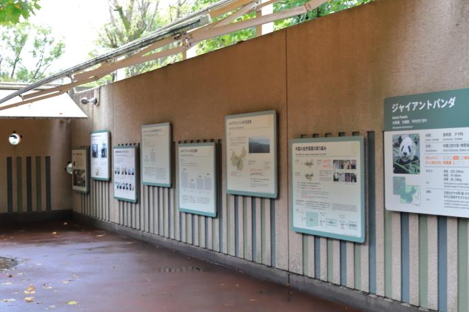 【上野動物園】part 1_f0348831_23534785.jpg