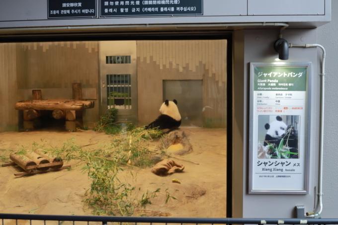 【上野動物園】part 1_f0348831_23534805.jpg