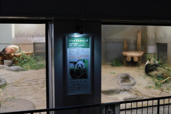 【上野動物園】part 1_f0348831_23540511.jpg