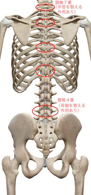 喉が痛いときには、手首を整えましょう 〜ある日の施術より〜_e0073240_10024642.jpg