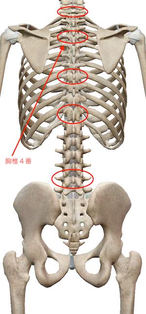 喉が痛いときには、手首を整えましょう 〜ある日の施術より〜_e0073240_10051091.jpg
