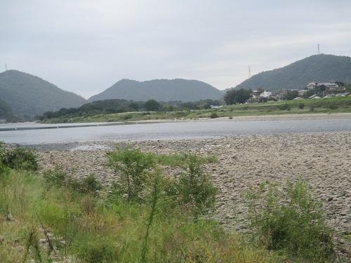長良川の河川工事-なんだかヘンだよ_f0197754_00012870.jpg