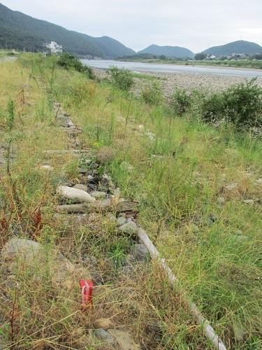 長良川の河川工事-なんだかヘンだよ_f0197754_00054980.jpg