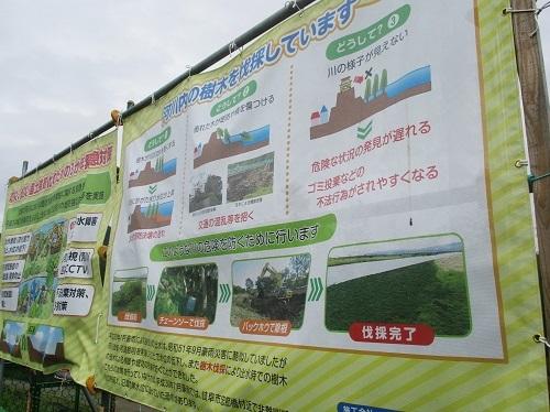 長良川の河川工事-なんだかヘンだよ_f0197754_00152114.jpg