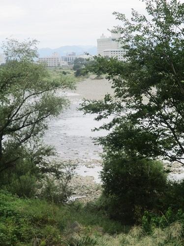 長良川の河川工事-なんだかヘンだよ_f0197754_00355361.jpg