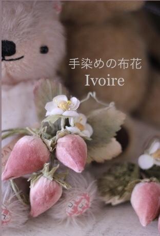 苺・ミニバラ・小花...♪*゚_f0372557_19415692.jpeg