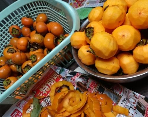 干し柿を作りました_a0111166_06422595.jpg