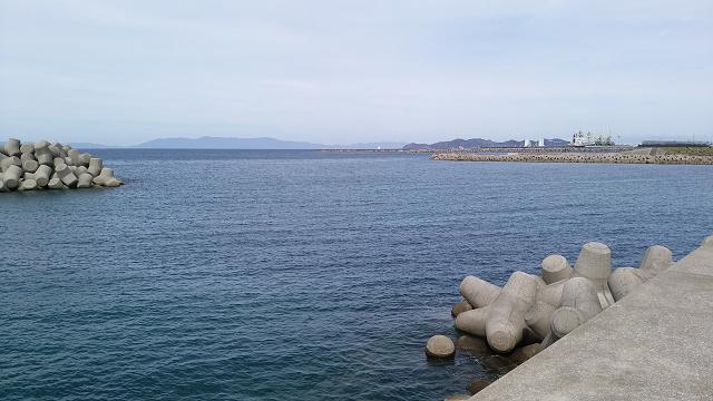日曜日は苓北町富岡漁港へアジ釣りに行く_a0278866_8503773.jpg