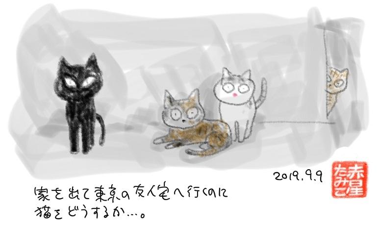 台風15号の記録2_b0019674_02261549.jpg