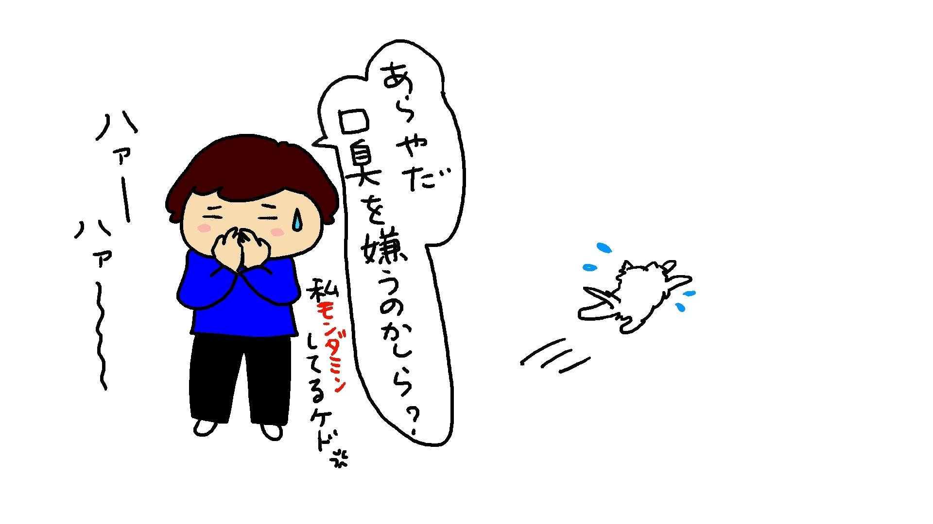 初太郎のお出迎え_d0129083_16172024.jpg