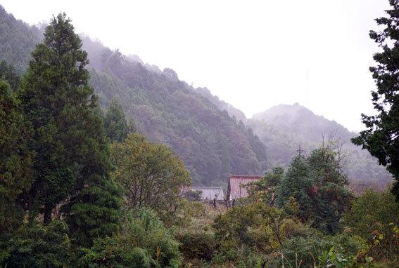 雨の朝は暗い_b0145296_09131271.jpg