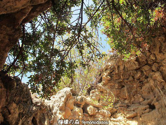 シッラの洞窟遺跡 エヴィア島エディプソス_c0010496_00451988.jpg