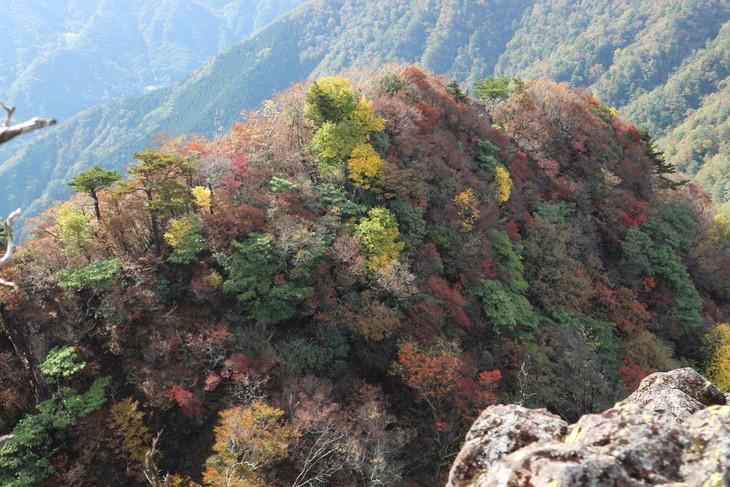 静かな山歩き(大障子岩&池の原展望所)_e0272335_19422762.jpg