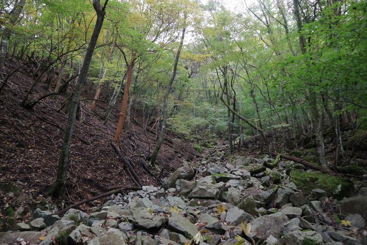 静かな山歩き(大障子岩&池の原展望所)_e0272335_20115419.jpg