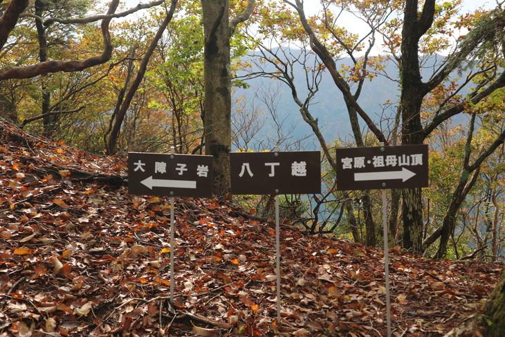 静かな山歩き(大障子岩&池の原展望所)_e0272335_20135574.jpg
