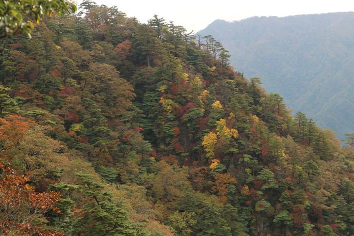 静かな山歩き(大障子岩&池の原展望所)_e0272335_20194585.jpg