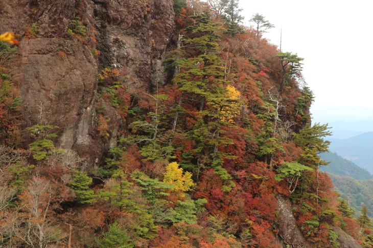 静かな山歩き(大障子岩&池の原展望所)_e0272335_20243398.jpg
