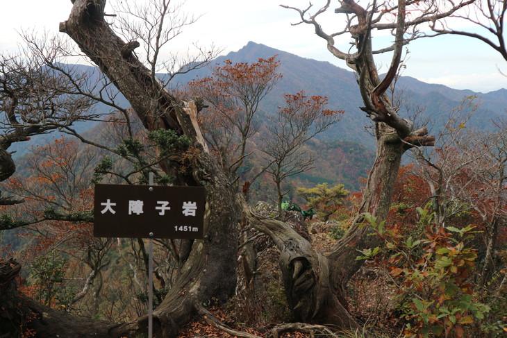 静かな山歩き(大障子岩&池の原展望所)_e0272335_2026226.jpg