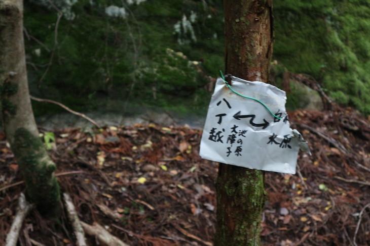 静かな山歩き(大障子岩&池の原展望所)_e0272335_2084883.jpg