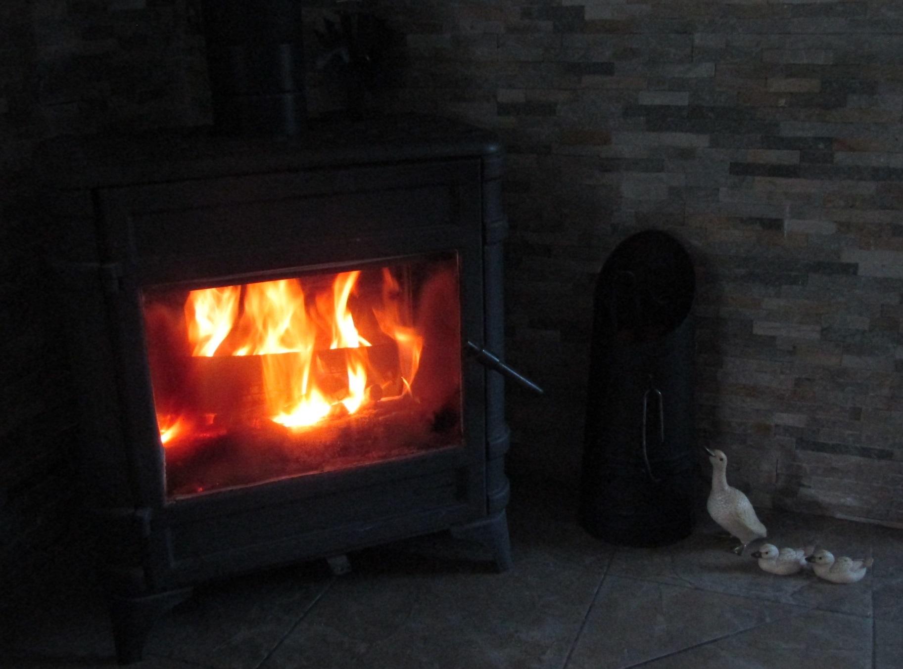 初暖炉 (2019 10/20 )_b0287748_02533598.jpg