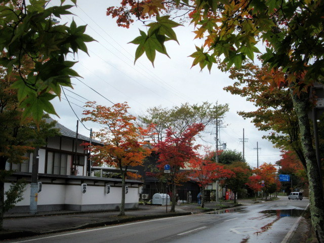 2019・軽井沢の紅葉速報③ * 10月26日の軽井沢駅前♪_f0236260_22283607.jpg