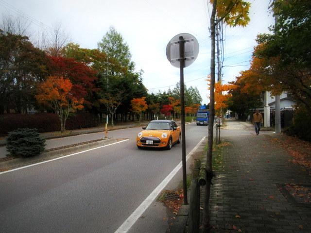 2019・軽井沢の紅葉速報③ * 10月26日の軽井沢駅前♪_f0236260_22305126.jpg