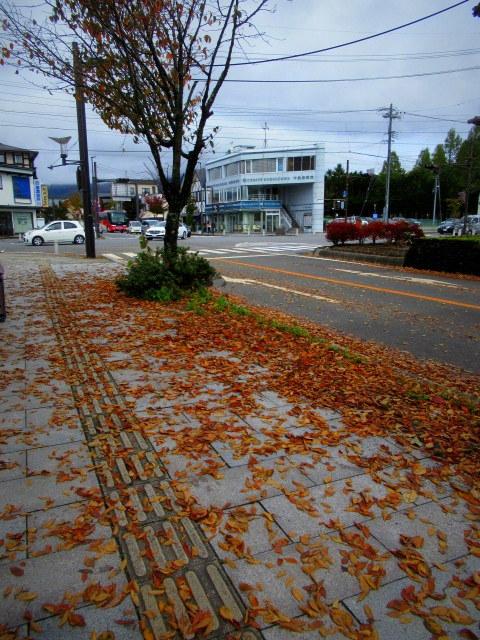 2019・軽井沢の紅葉速報③ * 10月26日の軽井沢駅前♪_f0236260_22474150.jpg