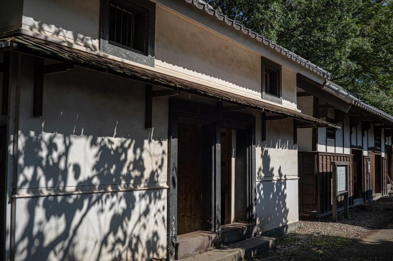 2019/10/26 見沼代用水東縁_b0171364_15303252.jpg