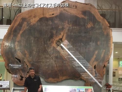 神戸へ行ったついでにちょっと観光_c0108065_18052820.jpg