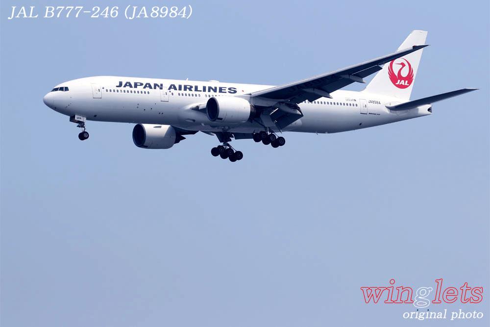 '19年 川崎・浮嶋公園レポート ・・・ JAL/JA773J_f0352866_2223439.jpg