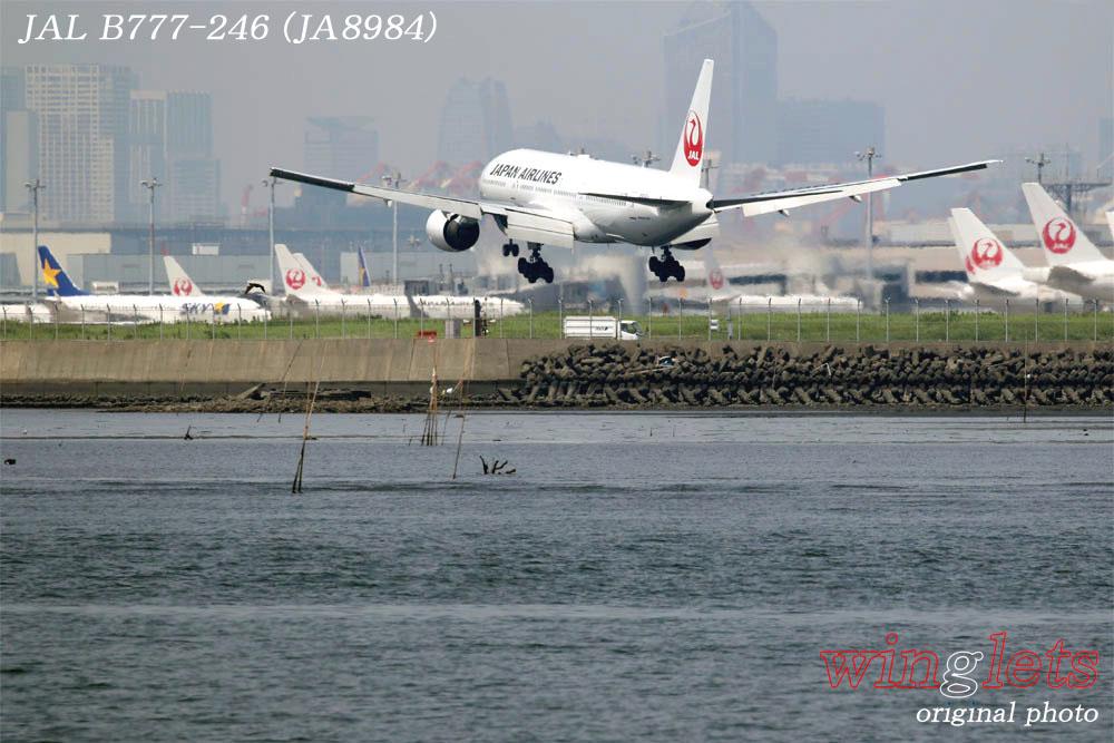 '19年 川崎・浮嶋公園レポート ・・・ JAL/JA773J_f0352866_22241374.jpg