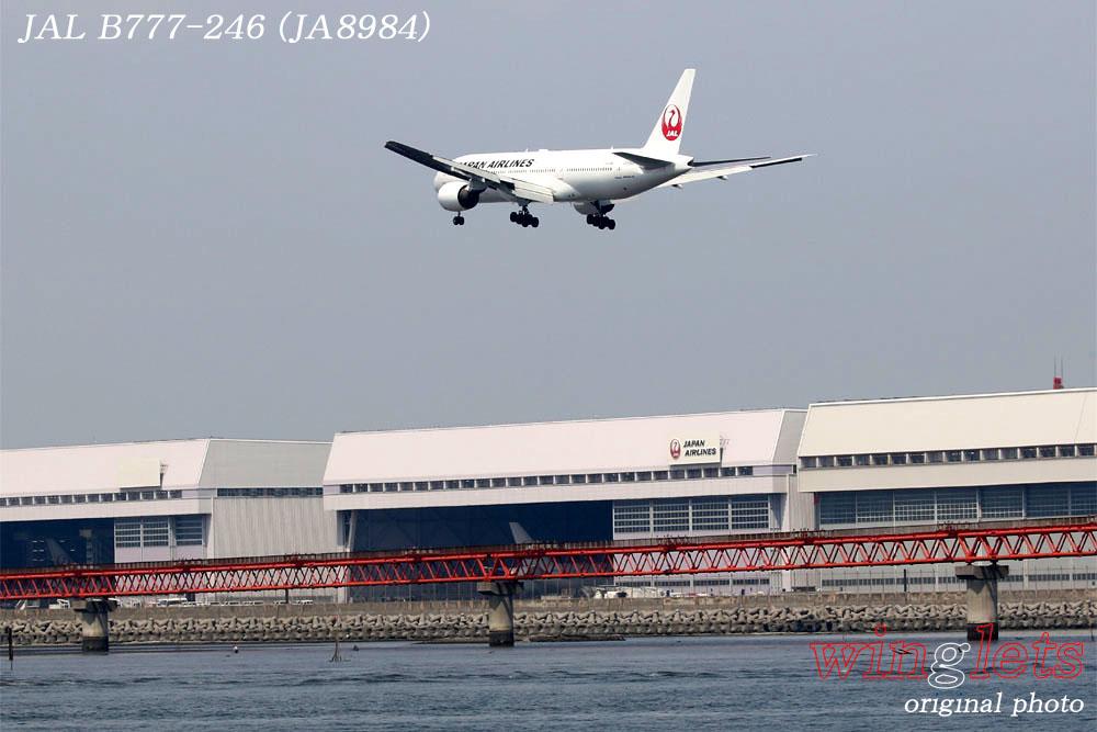 '19年 川崎・浮嶋公園レポート ・・・ JAL/JA773J_f0352866_222436.jpg