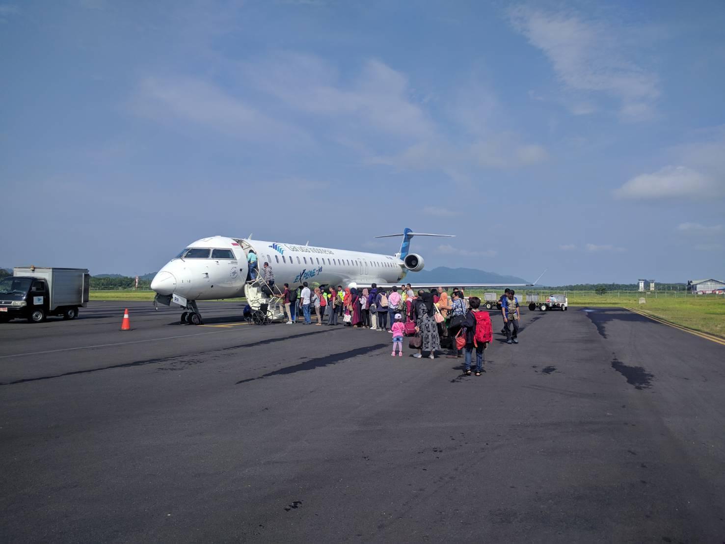 Manado Sulawesi採集紀行 その1_a0067578_12291321.jpg