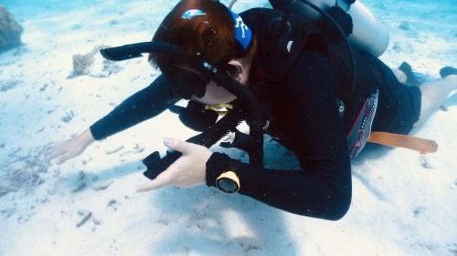 やる気満々!海洋講習1日目^_^_f0144385_16093500.jpeg