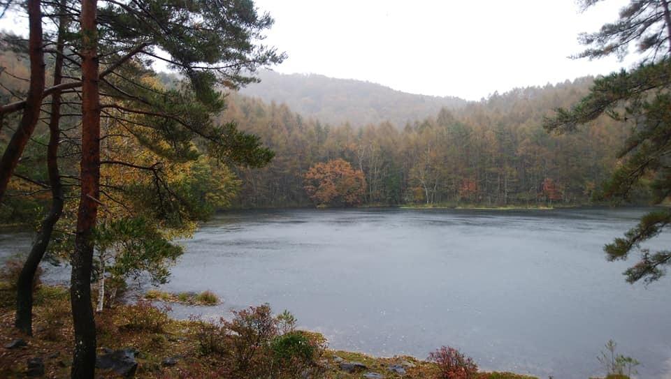 八ヶ岳リトリートハウスFlanのキセキ 雨の日の白駒池と八ヶ岳_e0231387_11485215.jpg