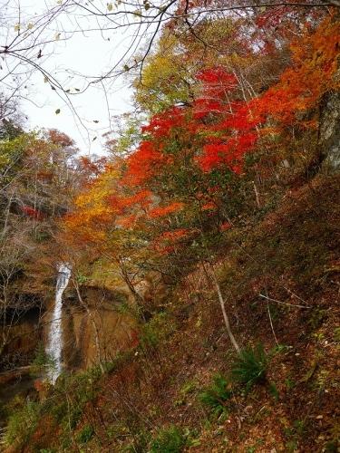 七条大滝、2019.10.24_f0138096_18072597.jpg