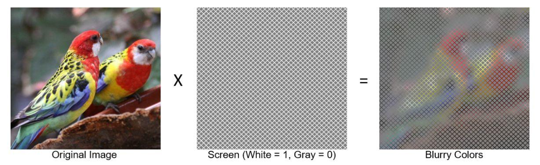 我々の脳は色と形を別々に扱っているらしいことを示す「幻覚」_c0025115_22005124.jpg