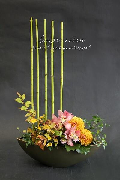 定期装花から サンゴミズキ 押水イエロー_a0085317_15322141.jpg