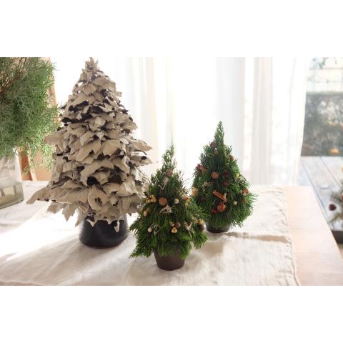 11月 クリスマスリースWS_a0161718_12080422.jpg