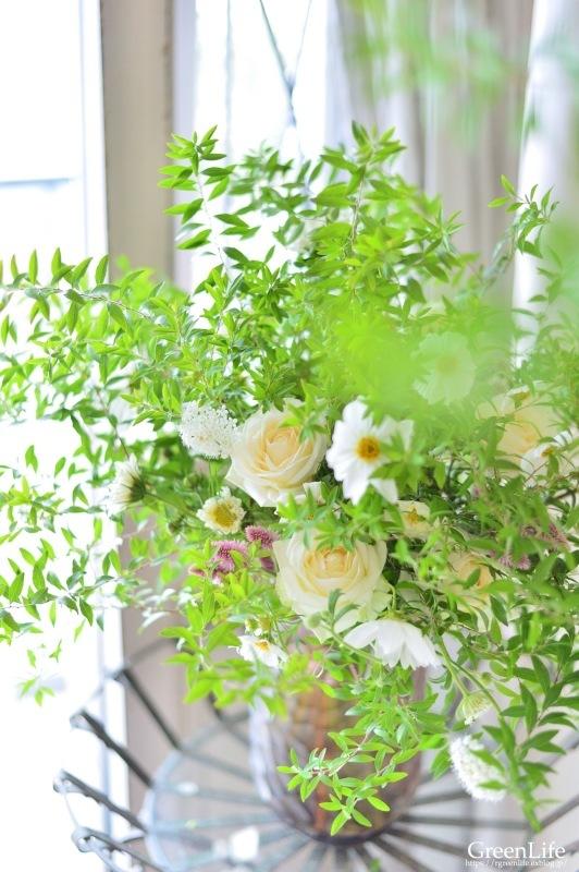 秋桜_f0321522_10063709.jpg