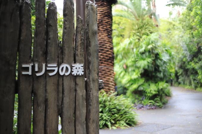 【上野動物園】part 2_f0348831_20170369.jpg
